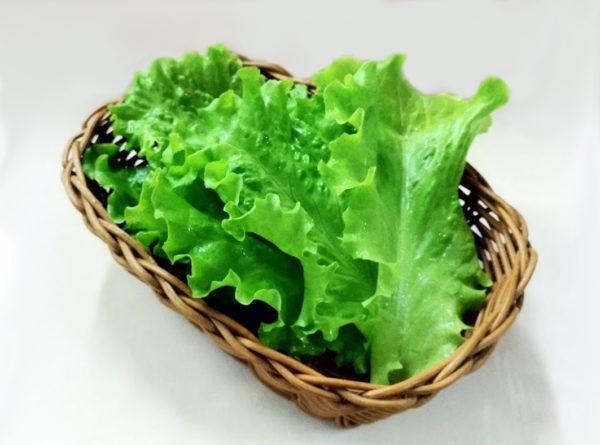 листья салата из ресторана